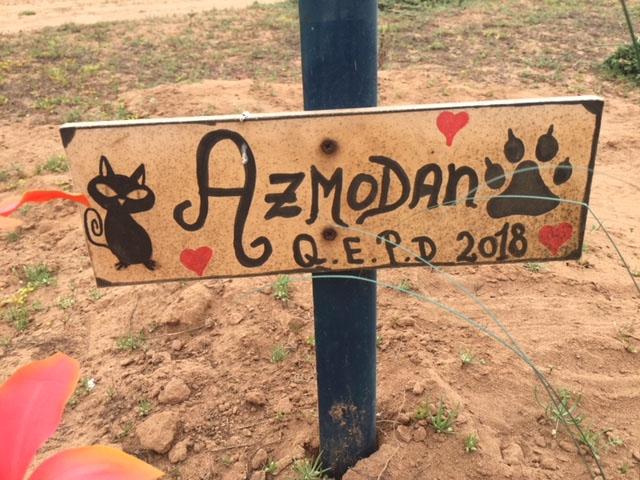 En Llanos De Las Compañías Han Ido Formando Un Cementerio De